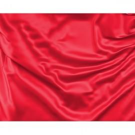 Raudona vėliava