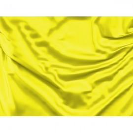 Geltona vėliava (Vietinis pavojus)