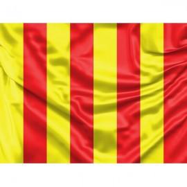 Geltona vėliava su raudonais brūkšniais (Nelygi ar slidi trasos vieta)
