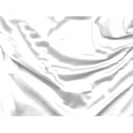 Balta vėliava (Trasoje lėtas automobilis)