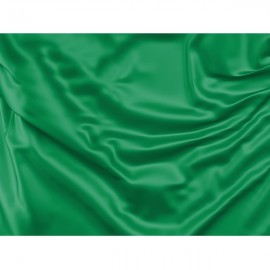 Žalia vėliava (Švari trasos dalis)