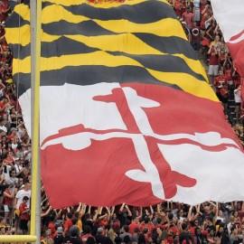 Vertikalios fanų vėliavos