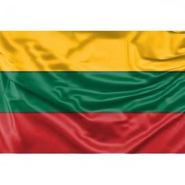 Lietuvos vėliava SIŪTA 100x170