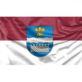 Daugpilio vėliava
