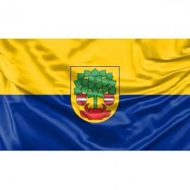 Valmieros vėliava