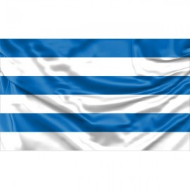Talino vėliava