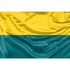 Narvos vėliava