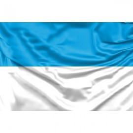 Viljandžio vėliava