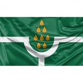 Panevėžio seniūnijos vėliava