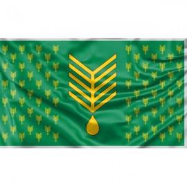 Lekėčių vėliava