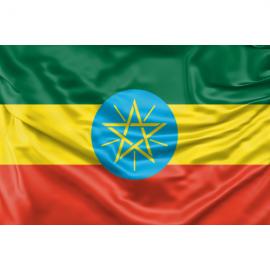 Etiopijos vėliava