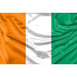 Dramblio Kaulo Kranto Respublikos vėliava