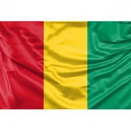 Gvinėjos vėliava