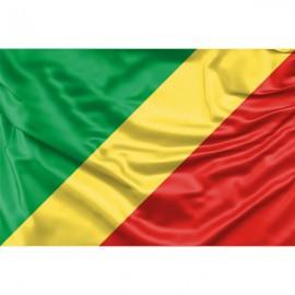 Kongo vėliava