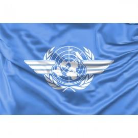 ICAO (Tarptautinė civilinės aviacijos organizacija) vėliava