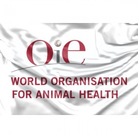 Pasaulio gyvūnų sveikatos organizacijos vėliava