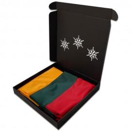 Lietuvos vėliava su Kalėdine dėžute