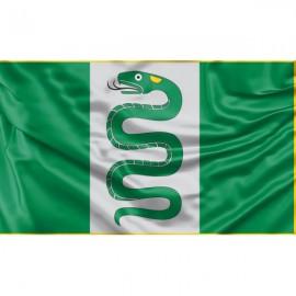 Vyžuonos vėliava
