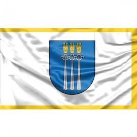 Druskininkų vėliava