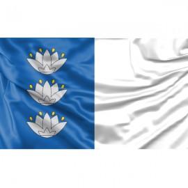Ignalinos vėliava