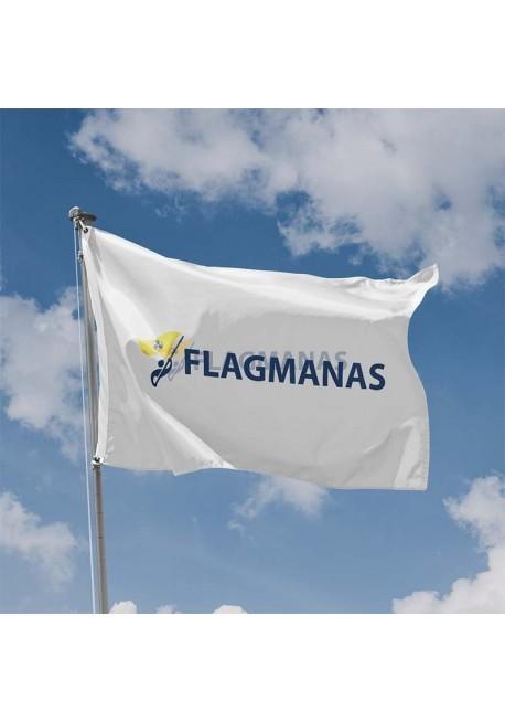 Horizontali vėliava