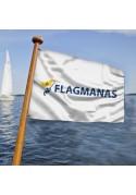 Laivo vėliavos
