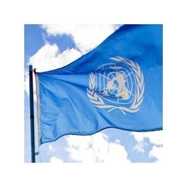 Organizacijų vėliavos