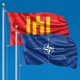Kariuomenės vėliavos