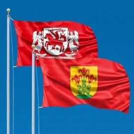 Lietuvos regionų ir rajonų vėliavos